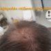 Hajápolás: otthoni praktikák – ezt csináld, hogy egészséges maradjon a hajad!