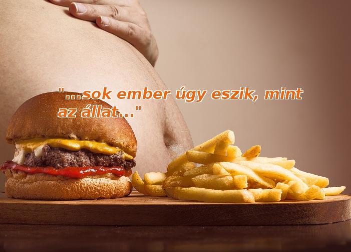 Egészséges étkezés: ne egyél úgy, mint az állat