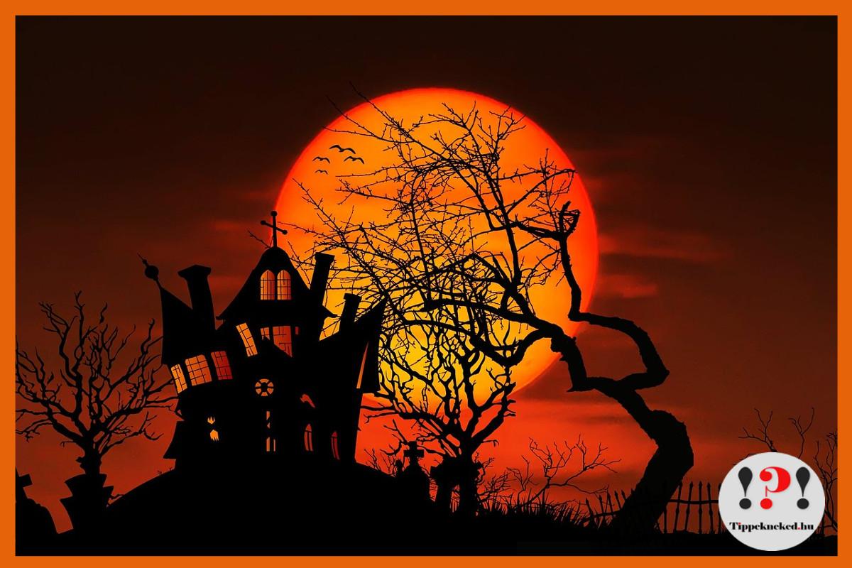 Halloween cikkek, Halloween ünnep