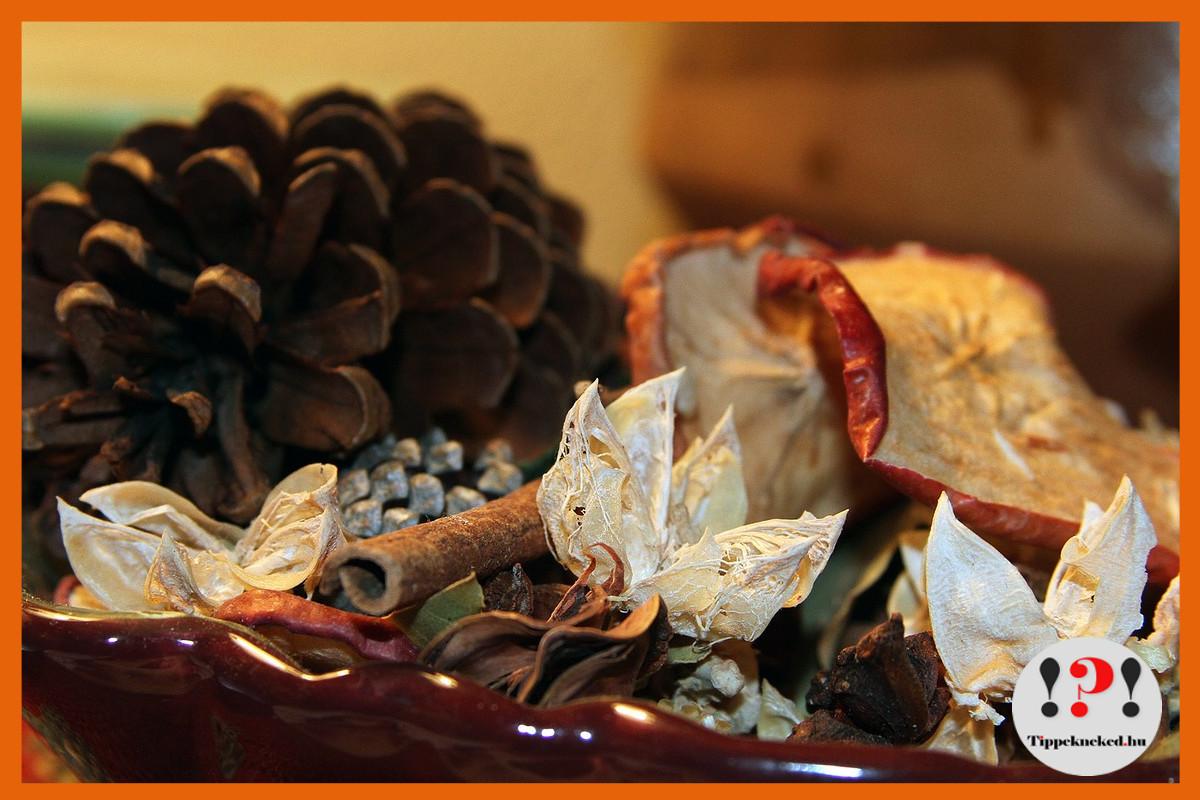 Potpourri: szárított gyümölcsök, illatos fenyőtoboz